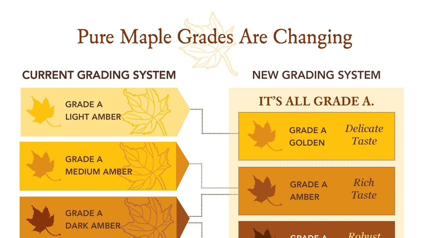 grading change from a b c The a grade comprises bands 1 and 2, the b grade has bands 3 and 4,  percentage pass marks for each grade change from year to year depending on performance levels.