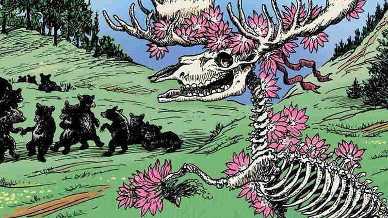 Dave's Picks Volume 9 features a 1974 Grateful Dead concert played in Montana.