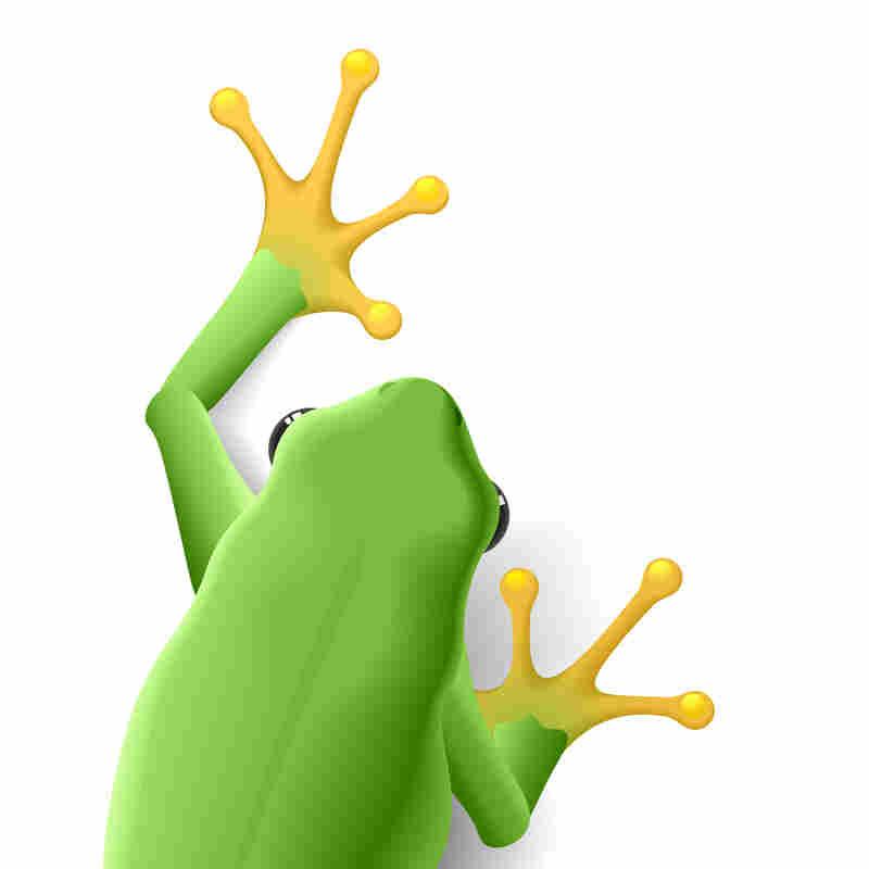 Frog promo