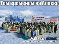 Penguins joined the protest on a number of Russian social media websites. Their signs read: