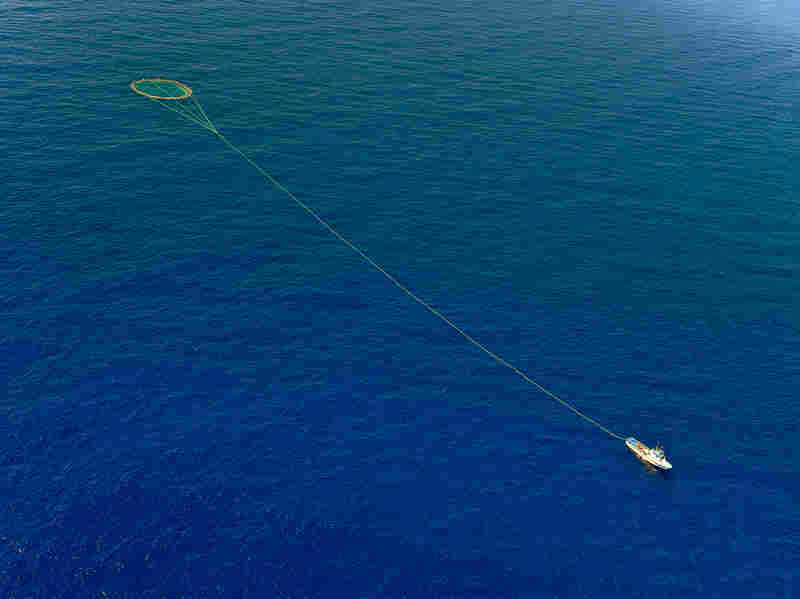 """A tuna fishing boat drags a cage of nets on the Mediterranean sea in 2010. (The Mediterranean is not considered to be part of the """"high seas."""")"""