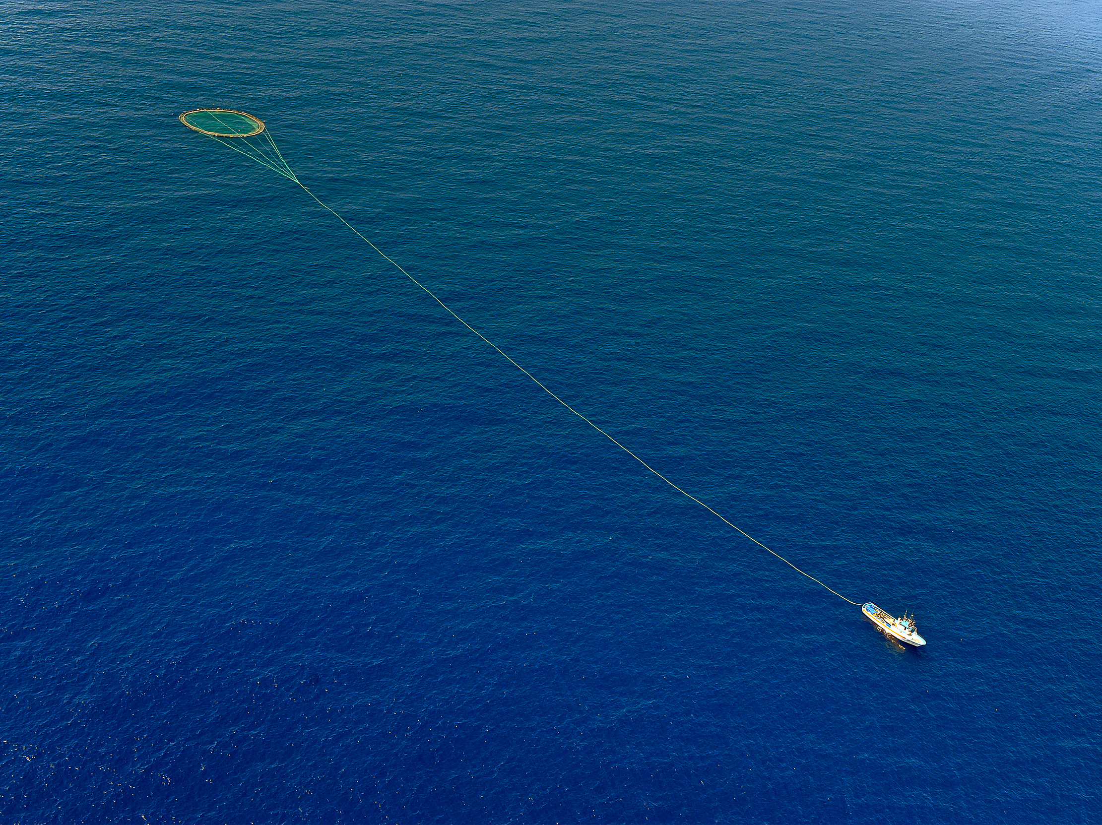 Should We Close Part Of The Ocean To Keep Fish On The Plate?