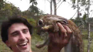 Andrew Ucles catches a wild rabbit using snakes.