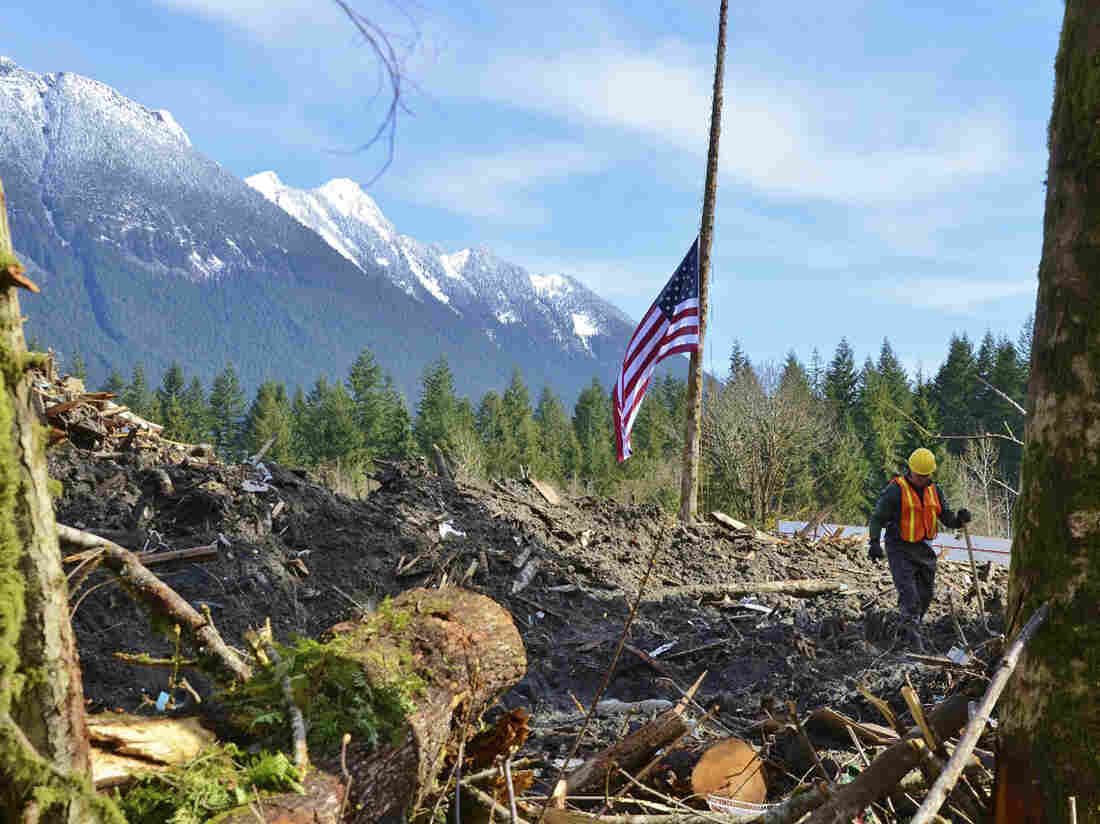 A flag flies at half-staff in the midst of the mudslide rubble in Oso, Wash.