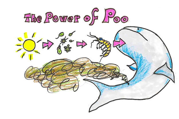 The power of poop