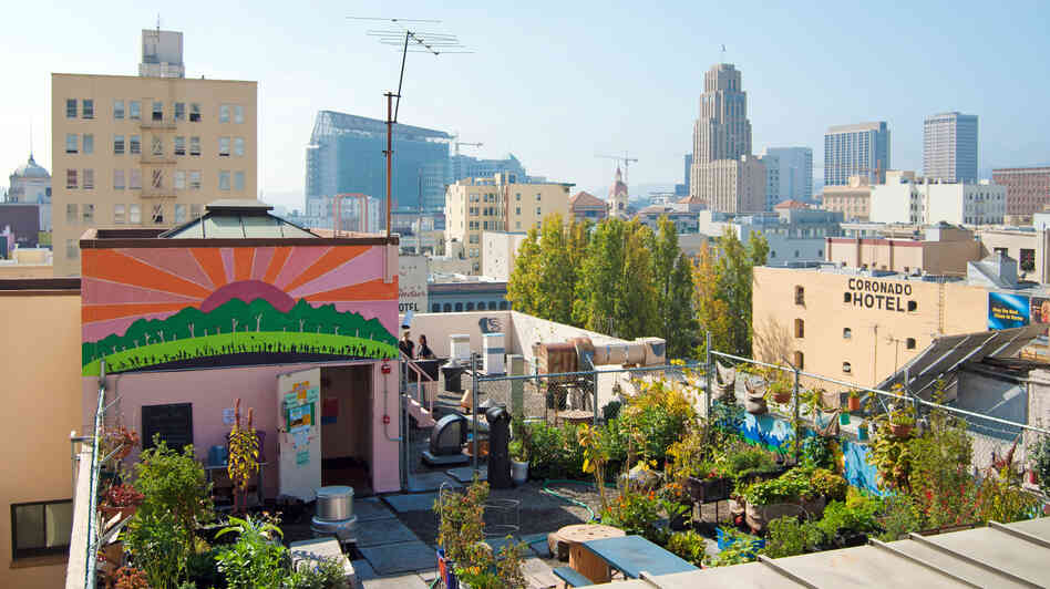 Graze the Roof is a community-produced garden that grows vegetables on the rooftop of a church in San Francisco.