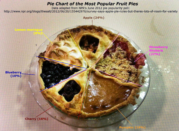 Melissa Wakefield's completed pie chart.