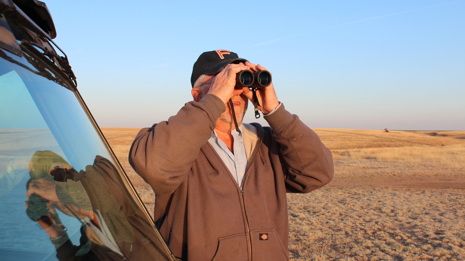 Wayne Keller, a rancher whose land is south of Dodge City, Kan., scans his land for prairie chickens. The federal government has proposed listing the bird as an endangered species.