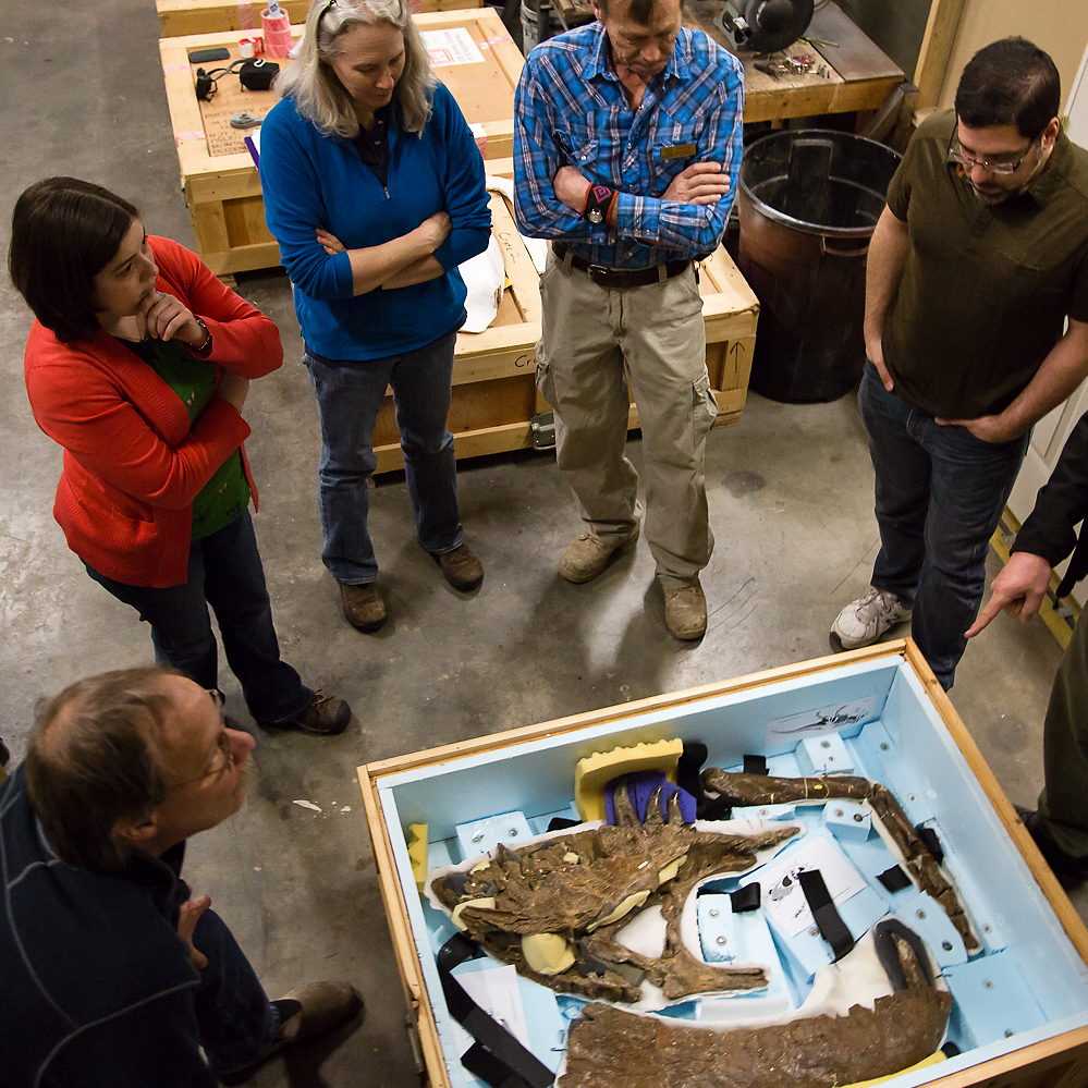Scientists and others take one last look at the Wankel's bones before they make their way to Washington, D.C.