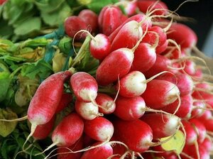Cherry Belle radishes grow superfast.