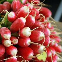 Cherry Belle radishes grow super fast.