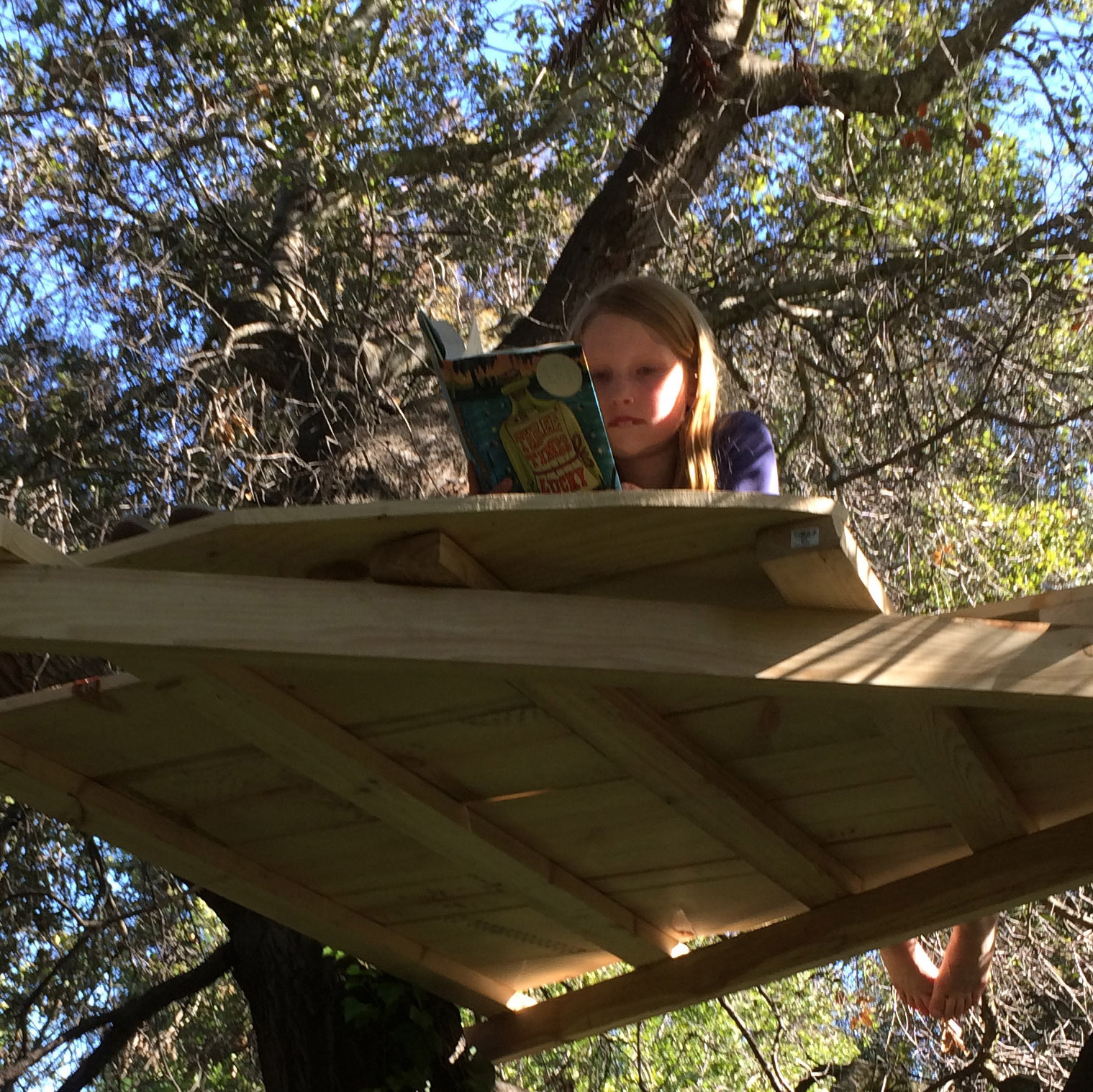Steve Henn's daughter, Faye, in a tree house, which they built together after he put away his smartphone for the weekend.