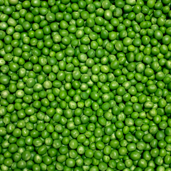Beware the fresh peas. The key to this tasty, hearty dish comes straight from a can.