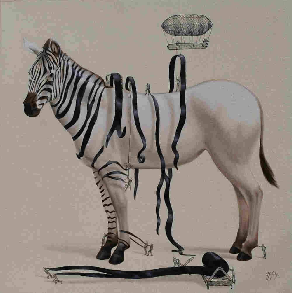 How a zebra gets its stripes.