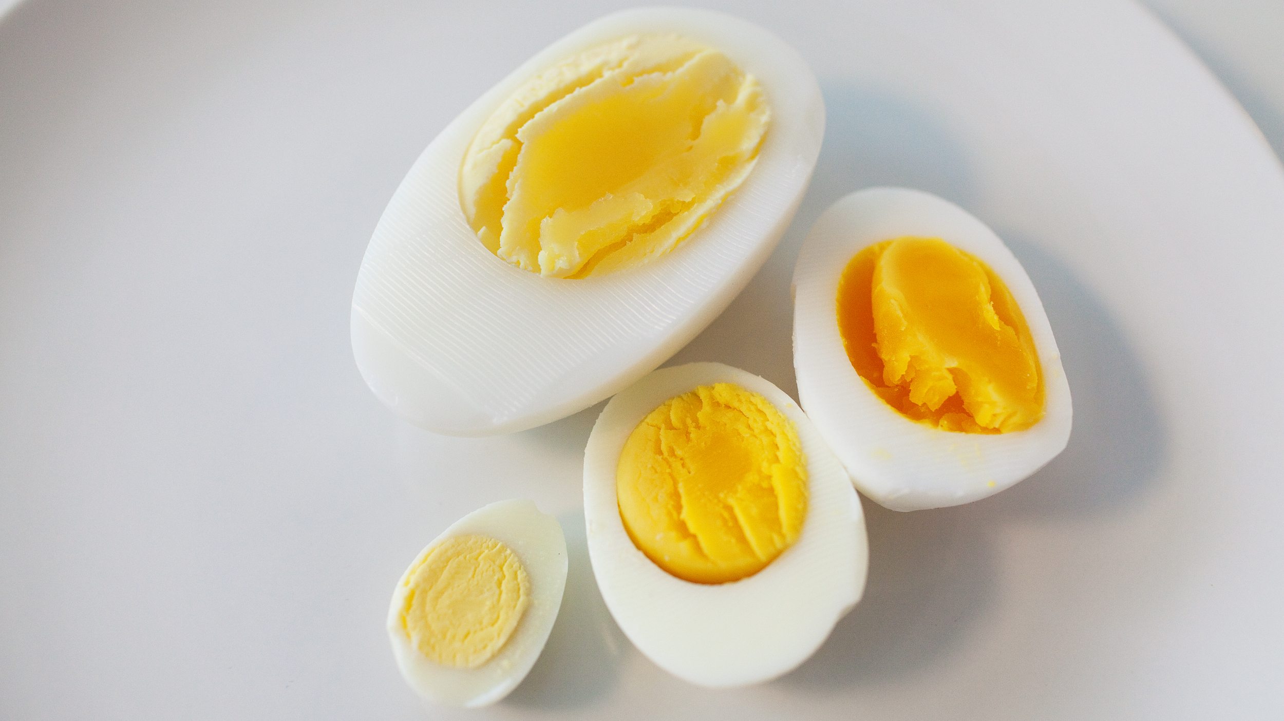 turkey eggs vs chicken eggs