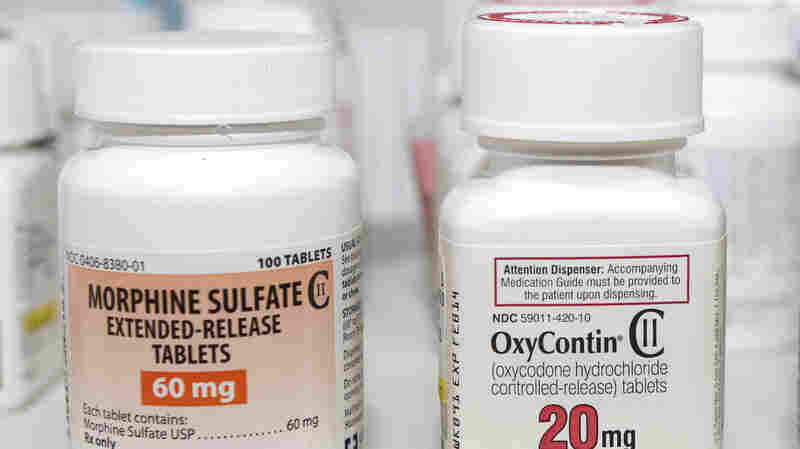 Morphine and oxycodone (the active ingredient in Oxycontin) are strong narcotic pain relievers on their own. Moxduo, a drug now up for FDA approval, would combine morphine and oxycodone in a single capsule.