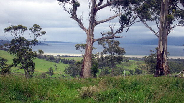 A view of Tasmania