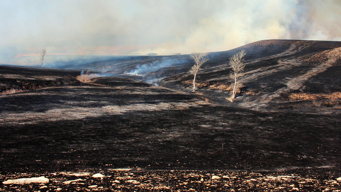 Fire Setting Ranchers Have Burning Desire To Save Tallgrass