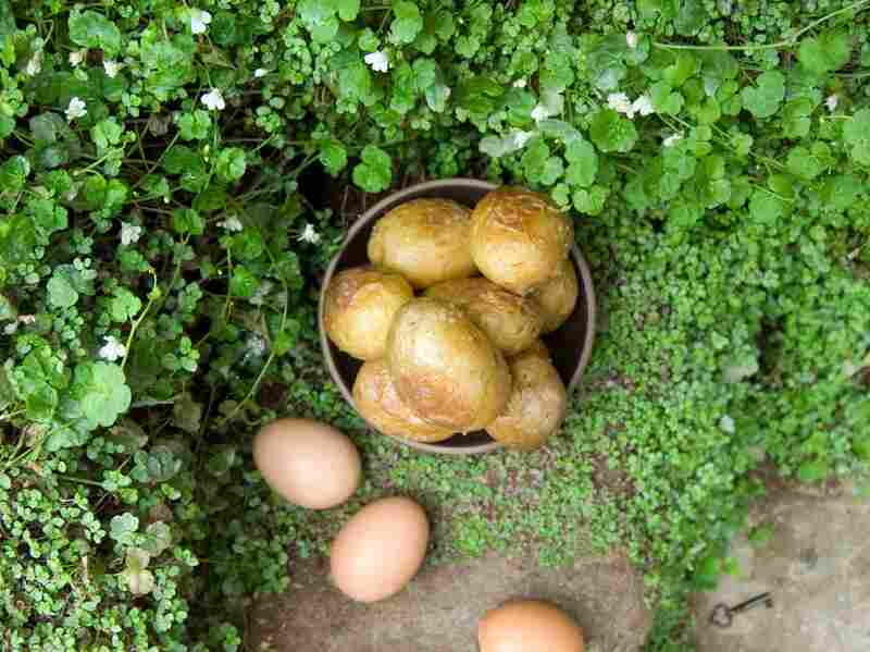 """""""There was a deep little hollow where you could build a sort of tiny oven with stones and roast potatoes and eggs in it. ... You could buy both potatoes and eggs and eat as many as you liked without feeling as if you were taking food out of the mouths of fourteen people."""" (The Secret Garden by Frances Hodgson Burnett)"""