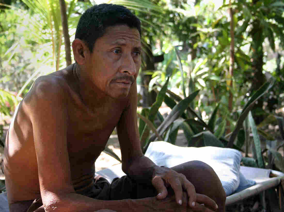 Manuel Antonio Tejarino, 49, cut sugar cane for nine years. Now his kidneys are failing, and he is too sick to work.