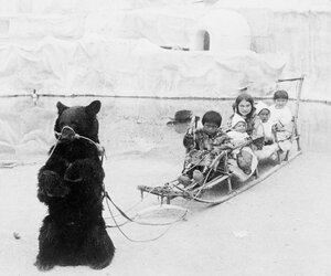 Playmates from the frozen Arctic--Eskimo youngsters and their tame bear, World's Fair, St. Louis, Mo.