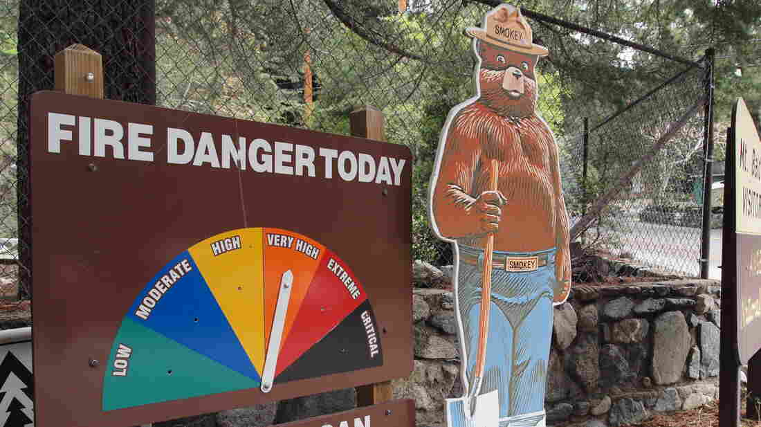 "Because of the dry conditions, the Angeles National Forest in Southern California is experiencing ""very high"" fire danger."