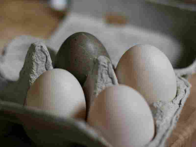 Duck eggs, including the exotic black egg from a Cayuga duck.