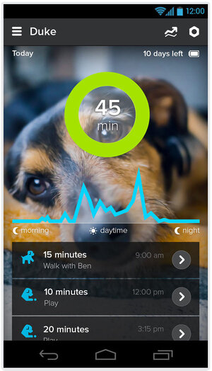 Whistle is a wearable device for your dog that tracks the pup's activity.