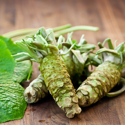 This wasabi doesn't have to grow in moving water; it just needs a semi-shaded space.