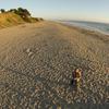 Merrill uses a drone to take aerial shots of Santa Cruz, Calif.