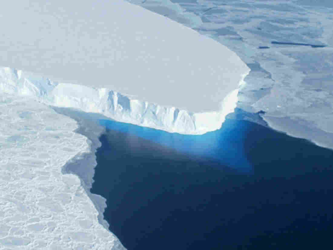 A NASA photo shows the Thwaites Glacier in West Antarctic. A new study indicates that part of the huge West Antarctic Ice Sheet is starting a slow and unstoppable collapse.