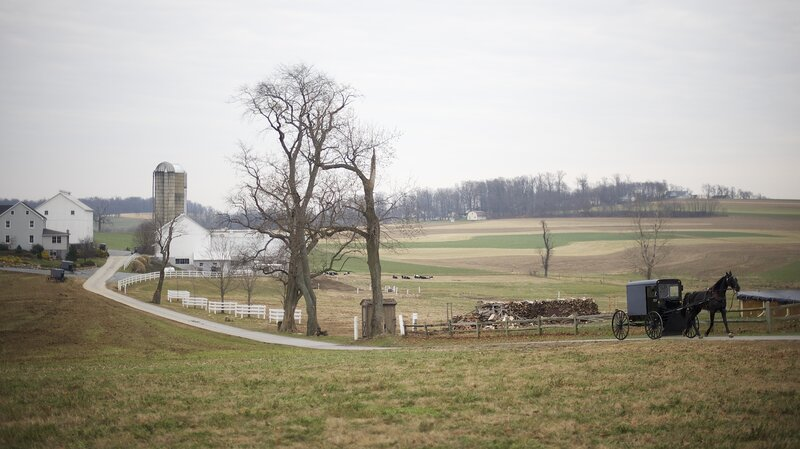 Amish Leave Pa  In Search Of Greener, Less Touristy Pastures