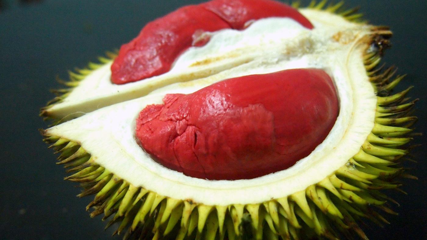 On The Trail Of Durian, Southeast Asia\'s \'Crème Brûlée On A Tree ...