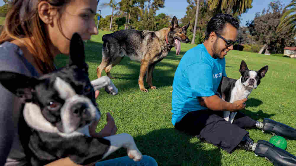 In this image from the June issue of National Geographic, Jose Armenta and his wife, Eliana, relax with their Boston terriers Oreo and Sassy, and Zenit, a German shepherd they adopted from the Marines.