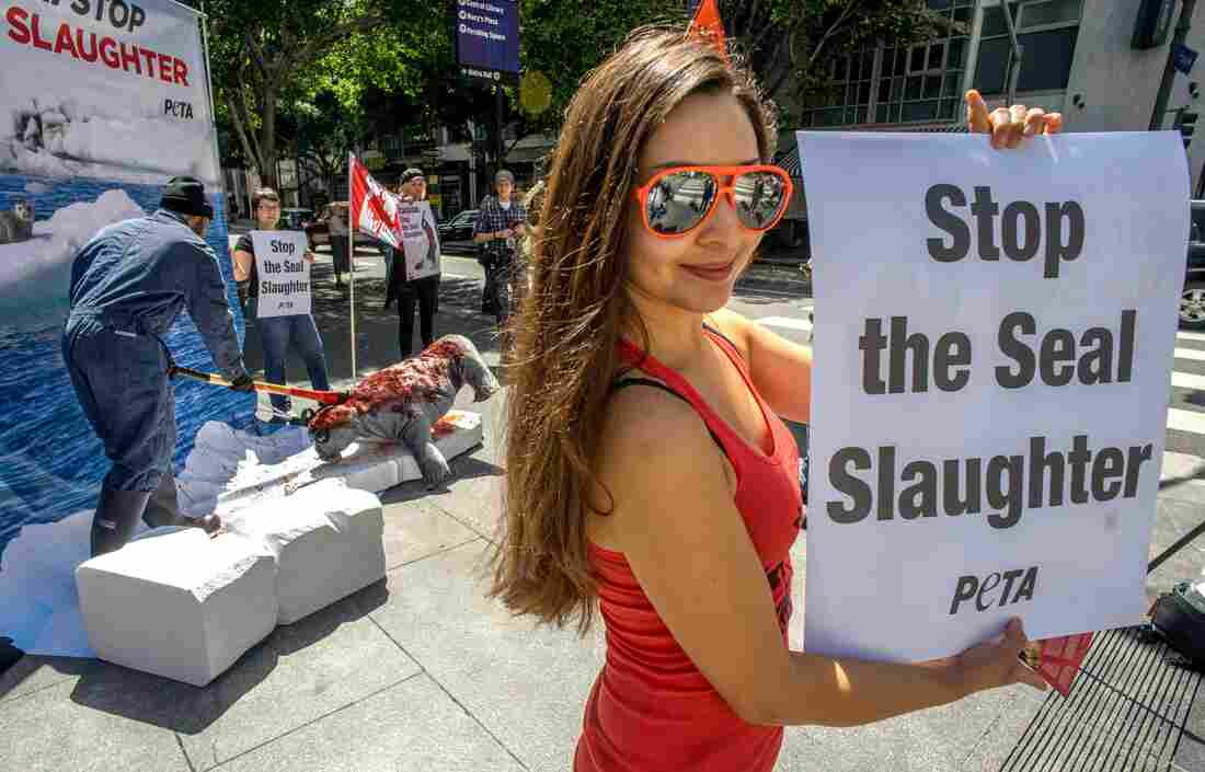 The World Trade Organization has maintained the EU's ban on products from Canada's seal hunt. Earlier this year, activists from PETA simulated slaughtering a seal in a protest at the Canadian Consulate in Los Angeles.