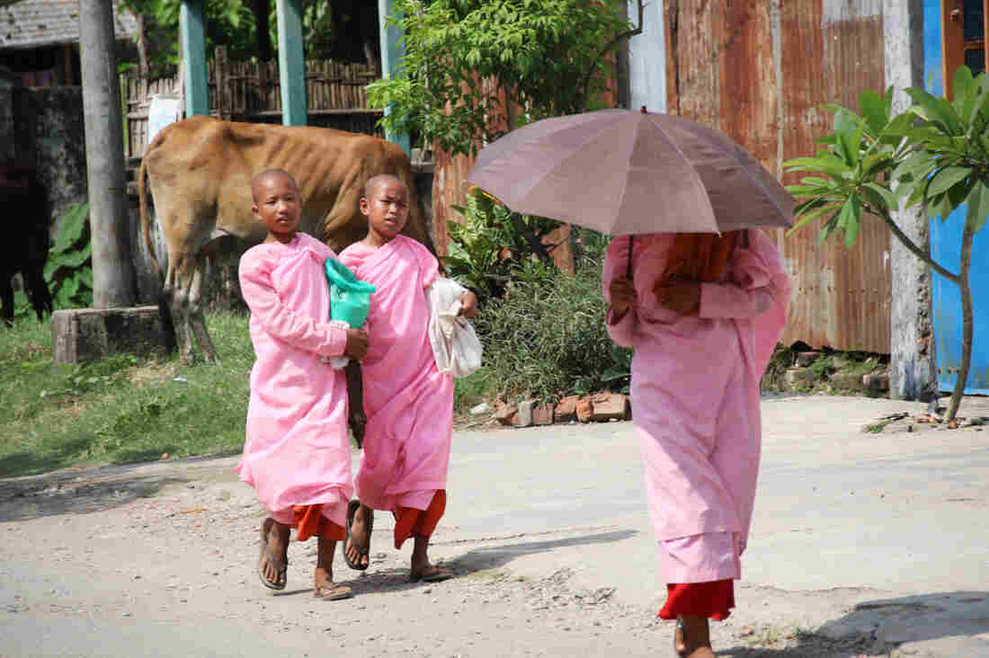 Three Buddhist nuns walk by a cow on the street in Sittwe. The Rakhine are a mostly Buddhist ethnic minority, with their own distinct language and culture.
