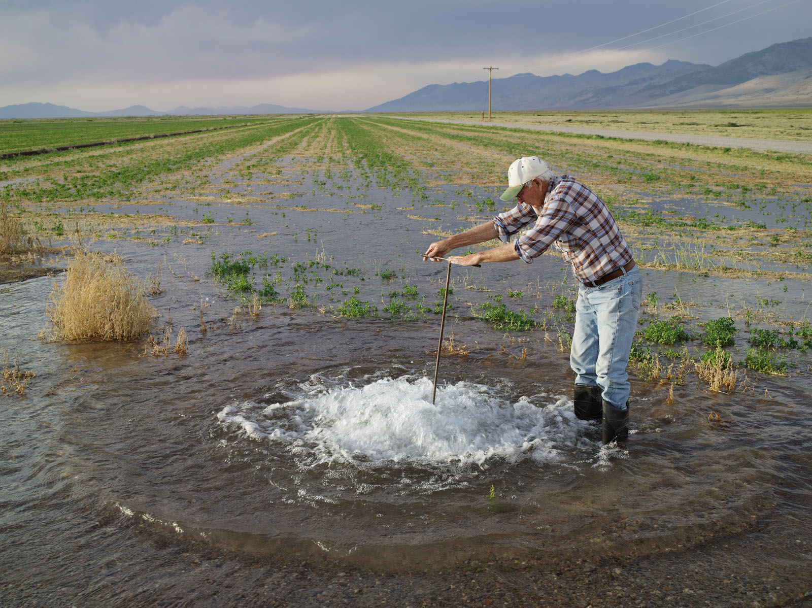 Don Flood Irrigating Alfalfa, Diamond Valley, Nevada 2012