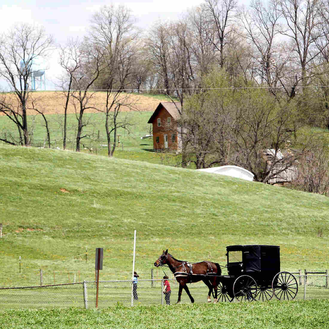 Measles Hits Amish Communities, And U.S. Cases Reach 20-Year High