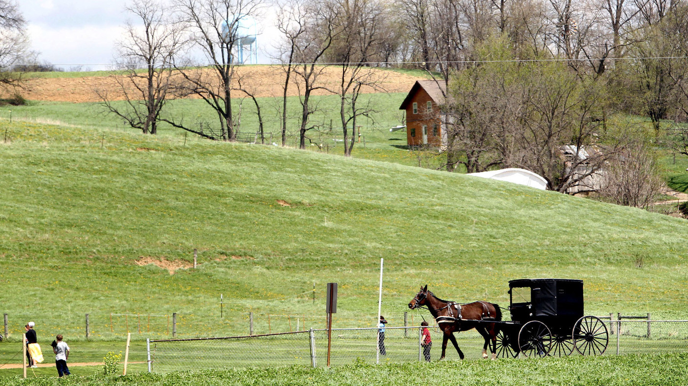 amish culture interview with the langlier Some background about mr and mrs langlier both were raised amish, they met when they were teens in the amish community in central pa mrs.