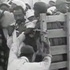 Workers crowd into the backs of trucks in the opening scene of 1960's Harvest of Shame.