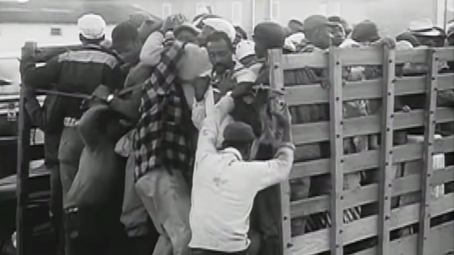 harvest of shame Directed by hector galan with dave marash a sequel to edward r murrow's famous harvest of shame documentary, showing the deplorable conditions of migrant farm workers in 1960, found.