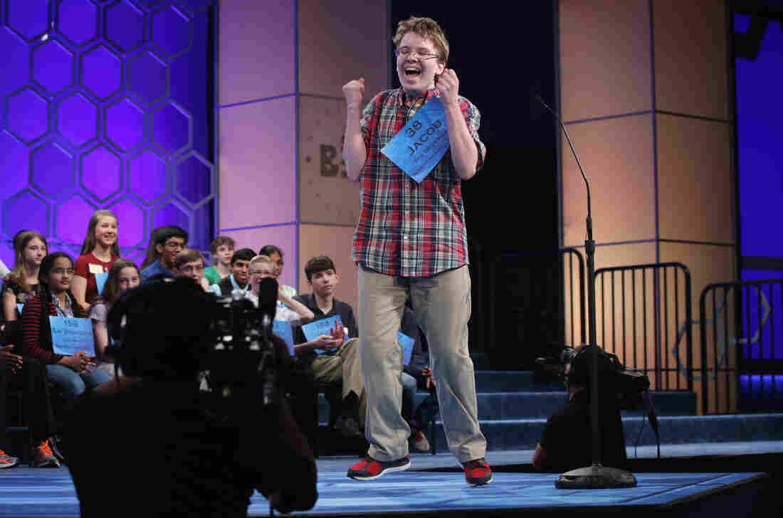 Speller Jacob Daniel Williamson of Cape Coral, Fla., reacts after he correctly spelled a word during round five of the 2014 Scripps National Spelling Bee competition Thursday. He made it to the finals — and won fans with his enthusiasm.
