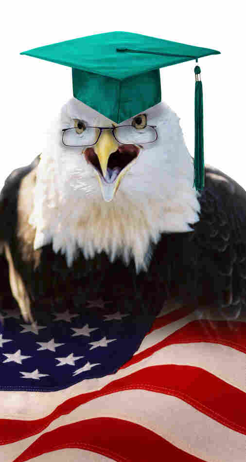 American eagle with mortar board.