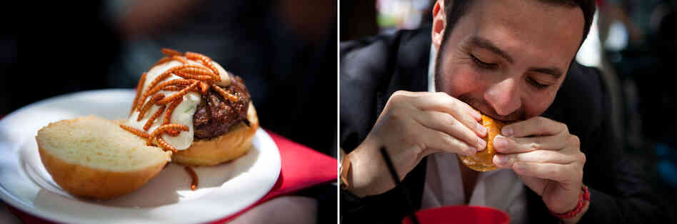 Andres Escobar, a Pestaurant attendee, enjoys a grasshopper burger garnished with Mexican spice mealworms.