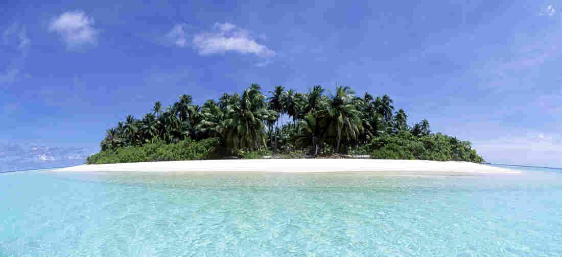 A tropical island under a blue sky.