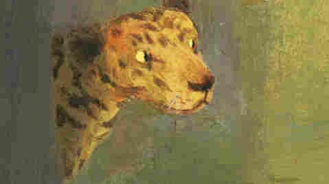 A Boy and a Jaguar book cover.