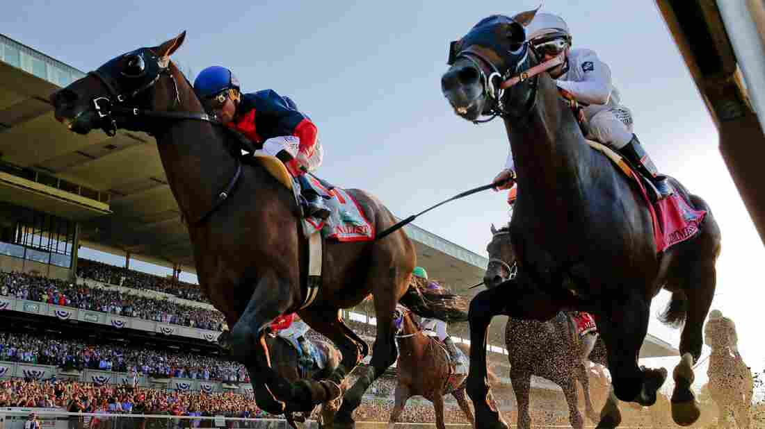 Tonalist (left) with Joel Rosario up edges out Commissioner with Javier Castellano up to win the 146th running of the Belmont Stakes horse race. Triple Crown favorite California Chrome tied for fourth place with Wicked Strong.