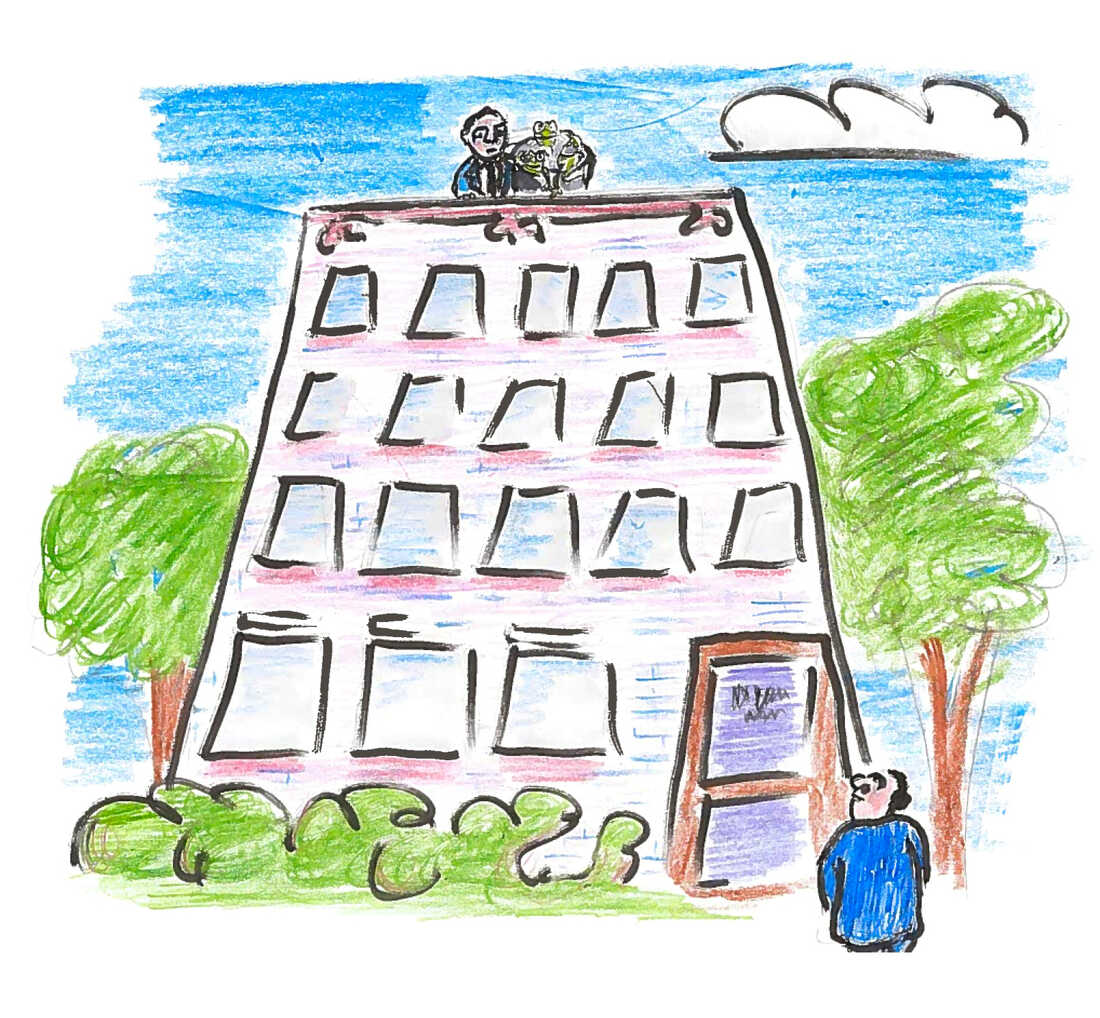 Professor Darlington stood on the roof of a multistory building in Cambridge, carrying a bucket of live frogs while Professor Barbour waited in the yard below.