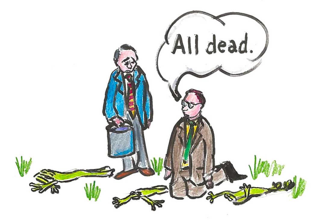All dead.