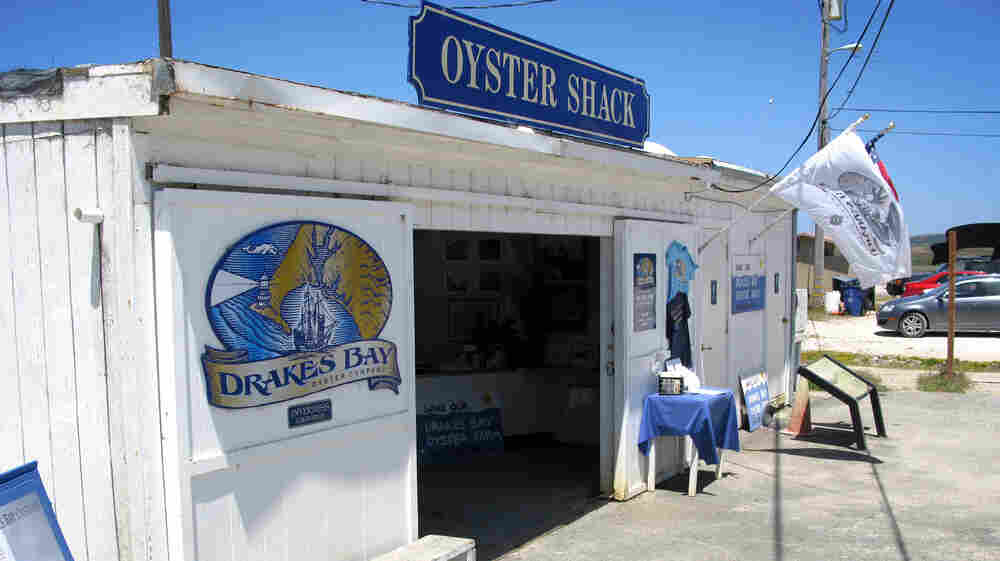Fight Over Calif. Oyster Company Splits Chefs And Land Defenders